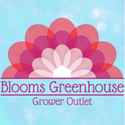 Blooms Greenhouse Grower Outlet