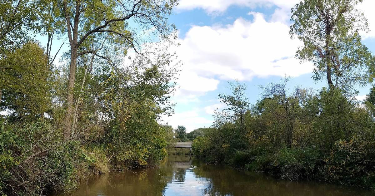 Shirley Heinze Land Trust acquires 34 Acres of wetlands along the Little Calumet River in Chesterton