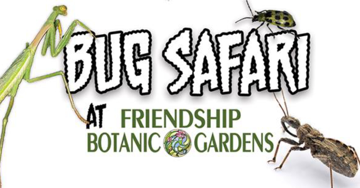 Bug Safari at Friendship Botanic Gardens