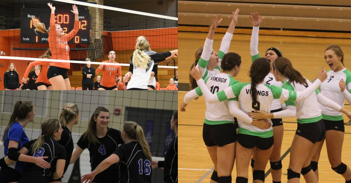 2019 Fall Sports Preview: Girls Volleyball