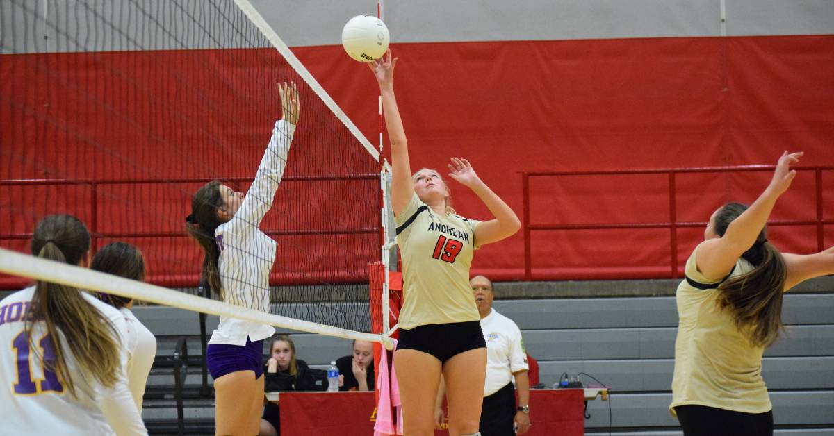 Andrean sweeps Hobart in 3-0 volleyball match