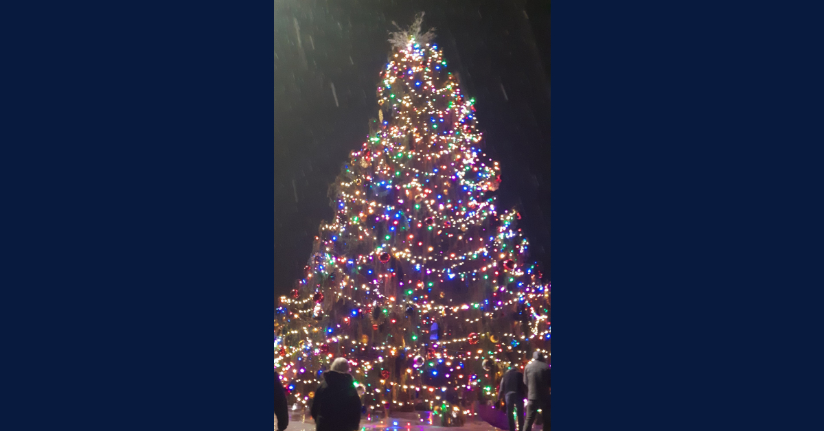 Tallest decorated Christmas tree in Indiana displayed at corner of 933, Douglas in South Bend