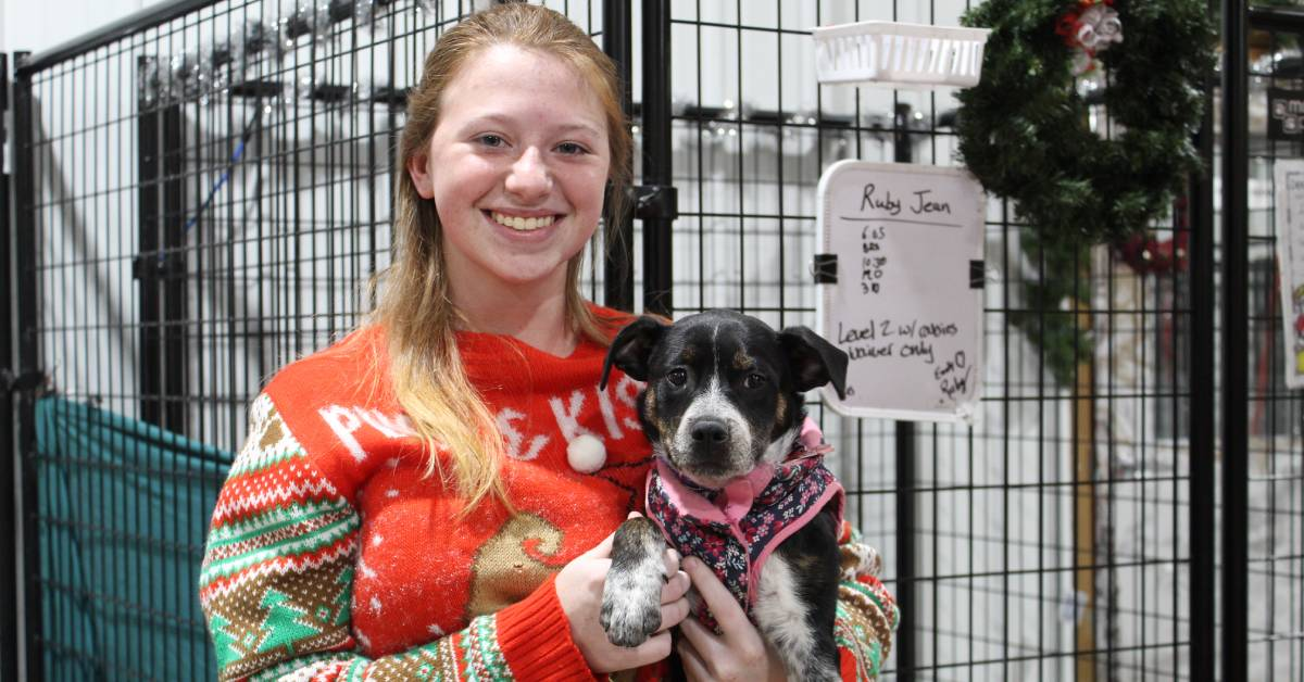 Lakeshore PAWS celebrates volunteers' tireless work for shelter dogs