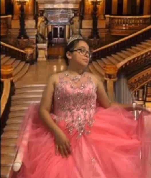 Bishop Noll Institute student posing in pink prom dress on a Zoom call
