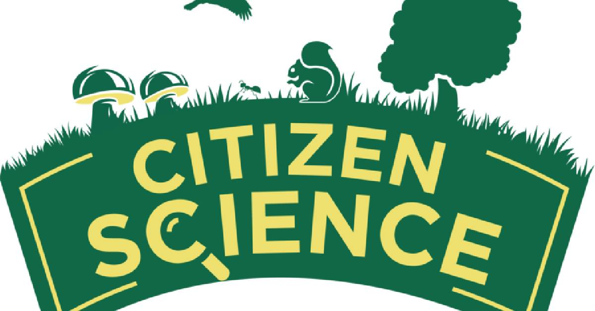 Dunes Learning Center takes citizen science online