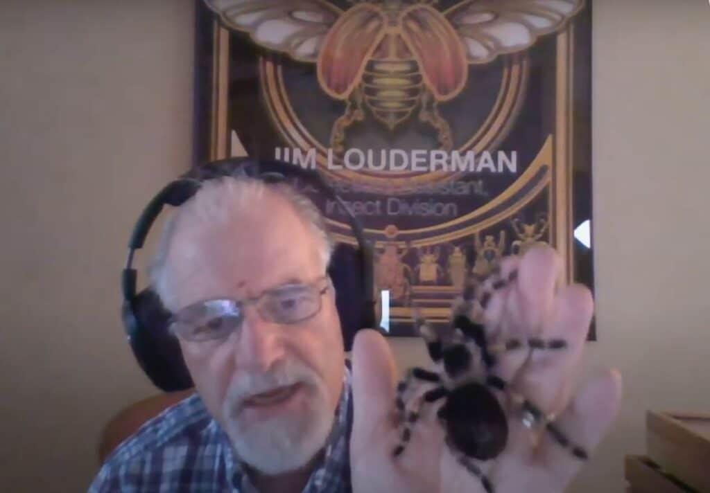 man holding spider