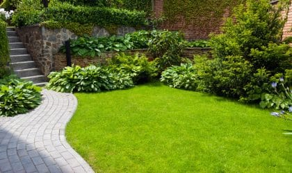 PermaGreen perfect lawn