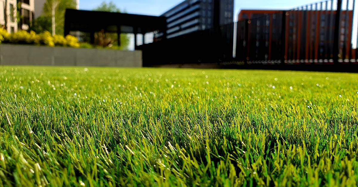 Discover your perfect lawn care routine with Perma-Green
