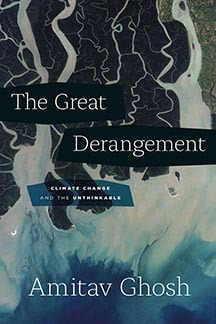 The Great Derangement book