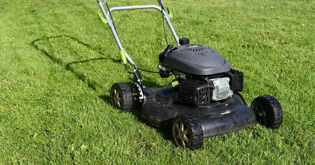 Tools of the trade: Perma-Green shares tips to caring for lawns