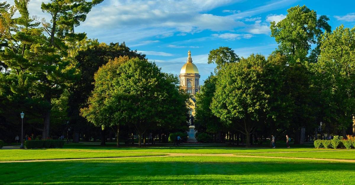 University of Notre Dame's AP-TIP announces finalists for AP Teachers, School and Affiliate of the Year