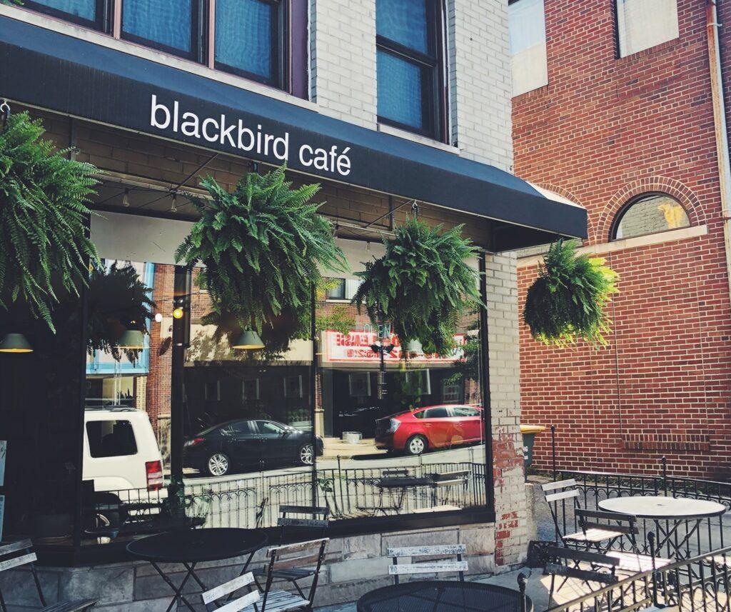 blackbird cafe patio