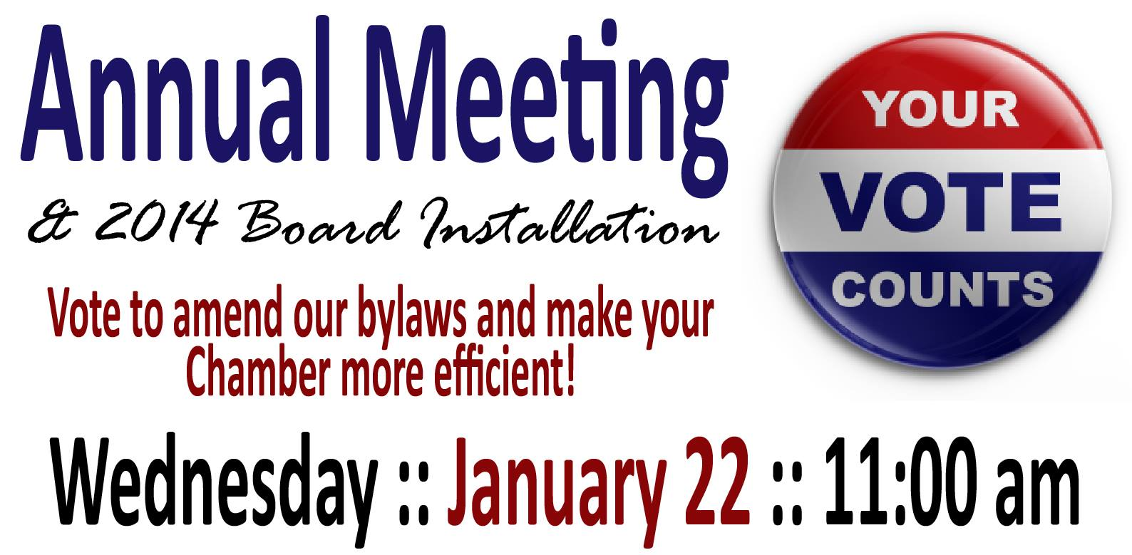 annual-meeting-vote