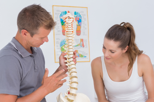 article-159-t-spine-anatomy