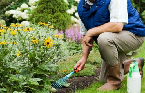 article-184-gardening