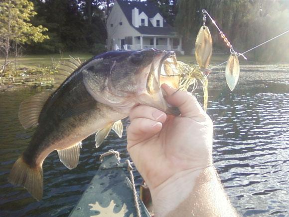 Bass-Fishing-Lake-in-LaPorte-1