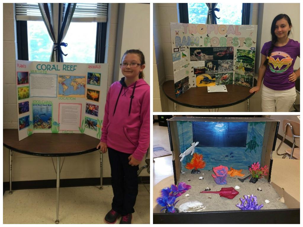 Boston-Middle-School-Biome-Collage-2015