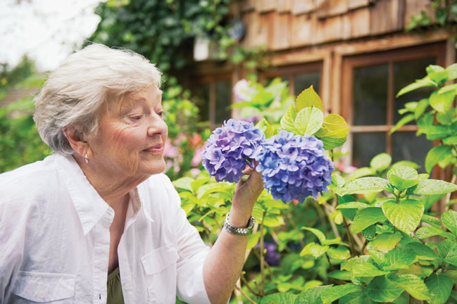 In-Home Alzheimer's & Dementia Care West Lake County