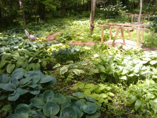 Brincka-Gardening-Days