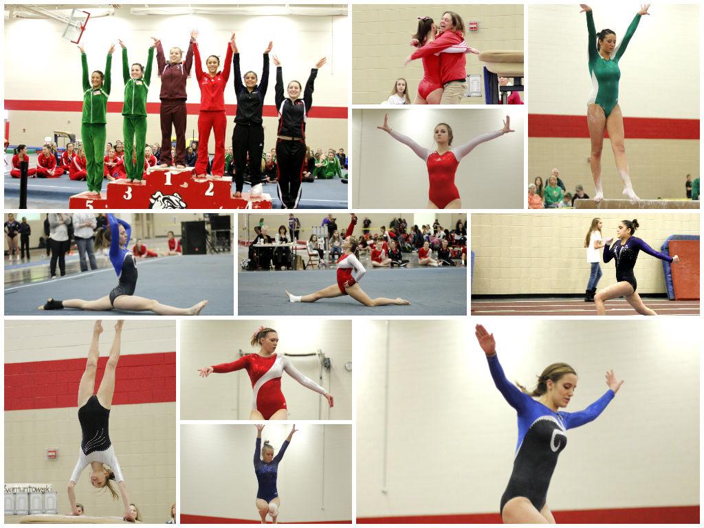 dac-gymnastics-collage-2014