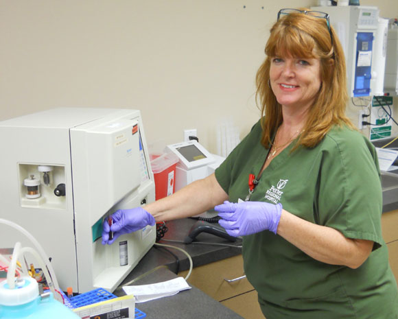 Glendale-Outpatient-Lab-1