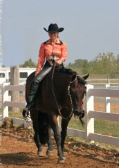 Great-Lakes-Equine-Events