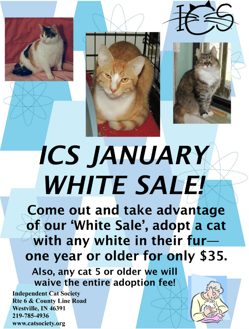 ICS-January-White-Sale-flyer