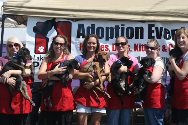 Lakeshore-Paws-Adoption-Event