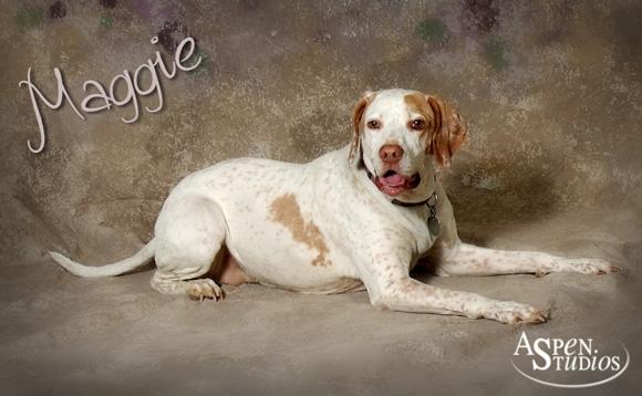 Maggie-1