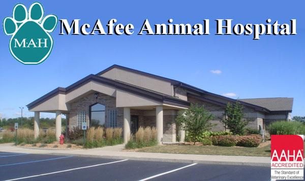 mcafee-animal-hospital