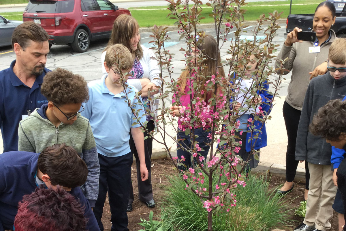 MCAS-Arbor-Day-with-The-Arbors-2017_02