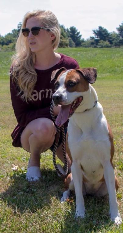 Michiana-Humane-Society-Our-Beautiful-Dogs