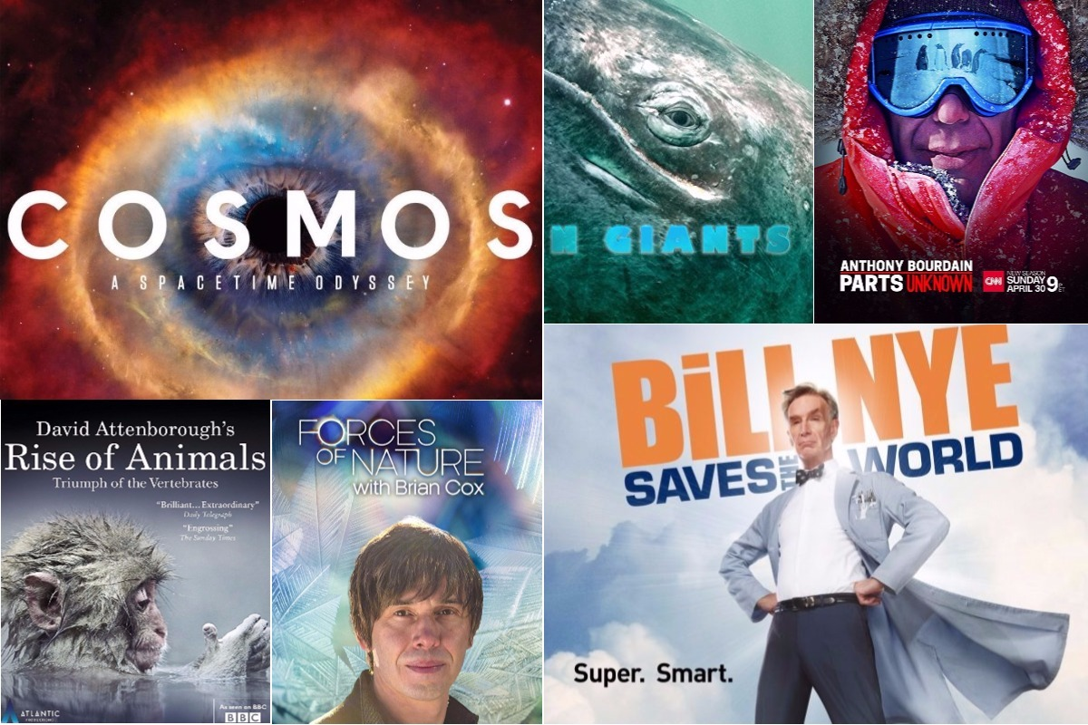 Netflix-Binge-Watching-4