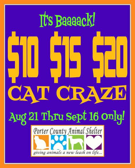 PCAS-Cat-Craze-Aug-Sept-2012