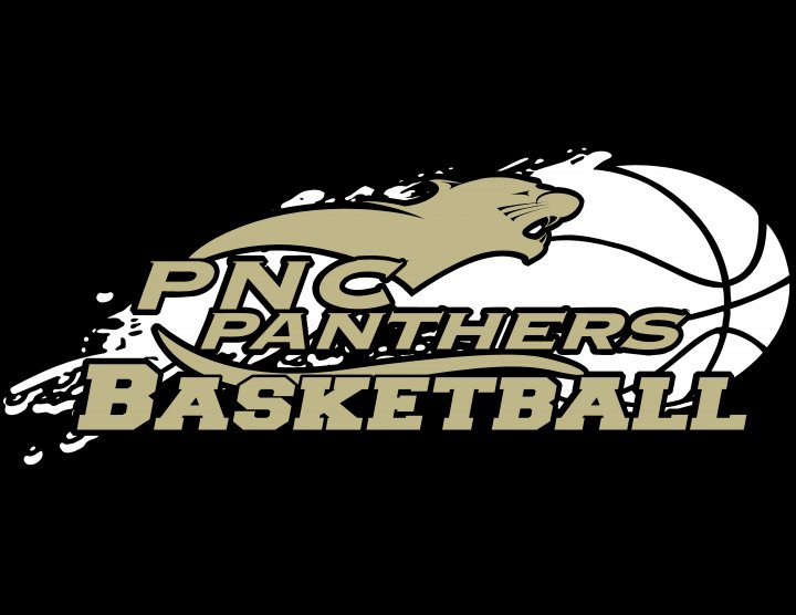 pnc-panthers-logo