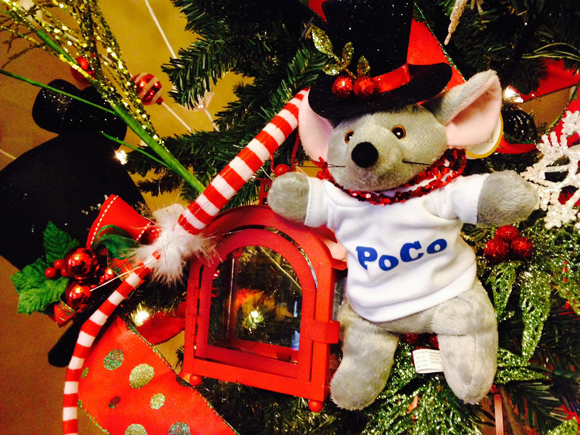 PoCo-Mouse