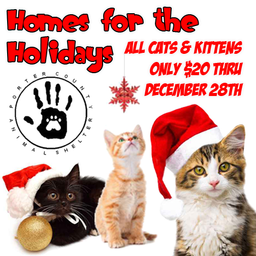 Porter-County-Animal-Shelter-Home-for-the-Holidays