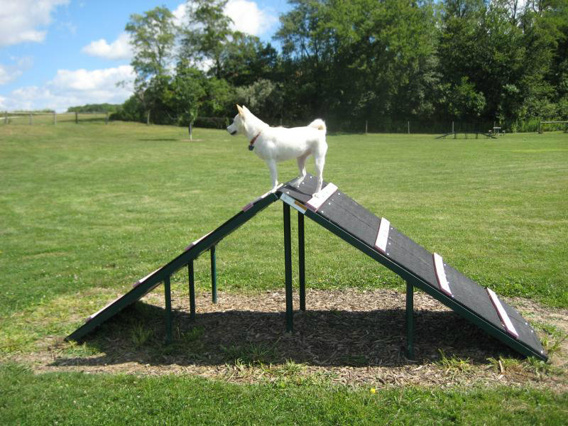 Region-Dog-Parks-04