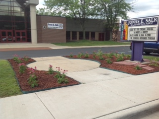 Jonas E. Salk Elementary School Receives Grant from James Patterson and Scholastic Reading Club for School Library