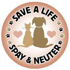 Porter County Animal Shelter Announces Low Cost Spay/Neuter Programs Available To Porter County Residents