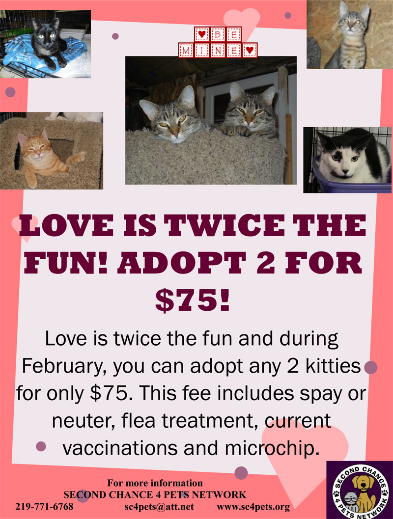 Second Chance 4 Pets Network: Love is Twice the Fun, Adopt 2 for $75