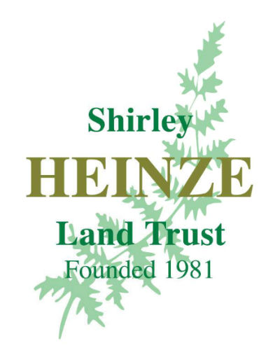 shirley-heinze-logo