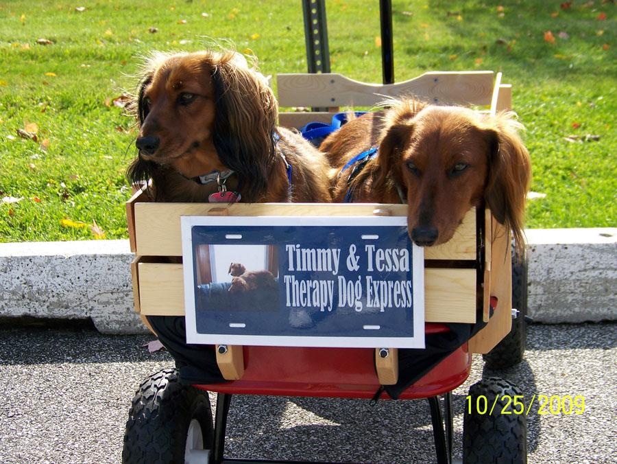 Timmy-Tessa-Wagon