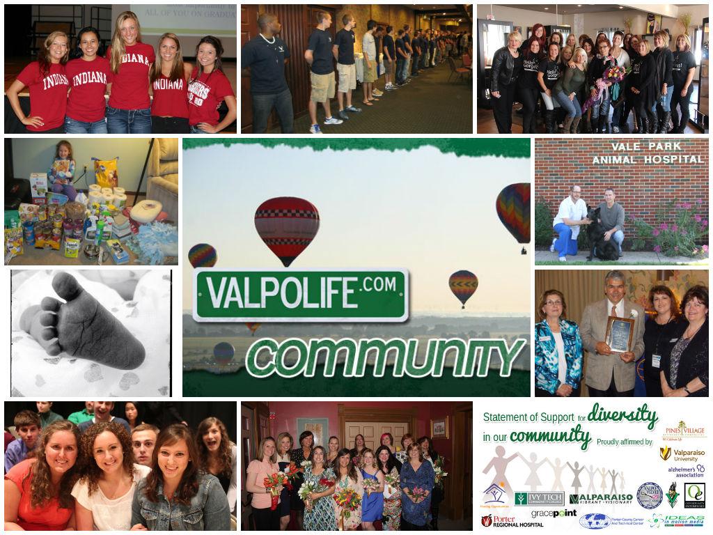 Top-VL-Community-2013