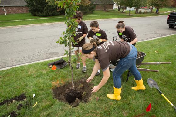 Tree-Planting-2013-2