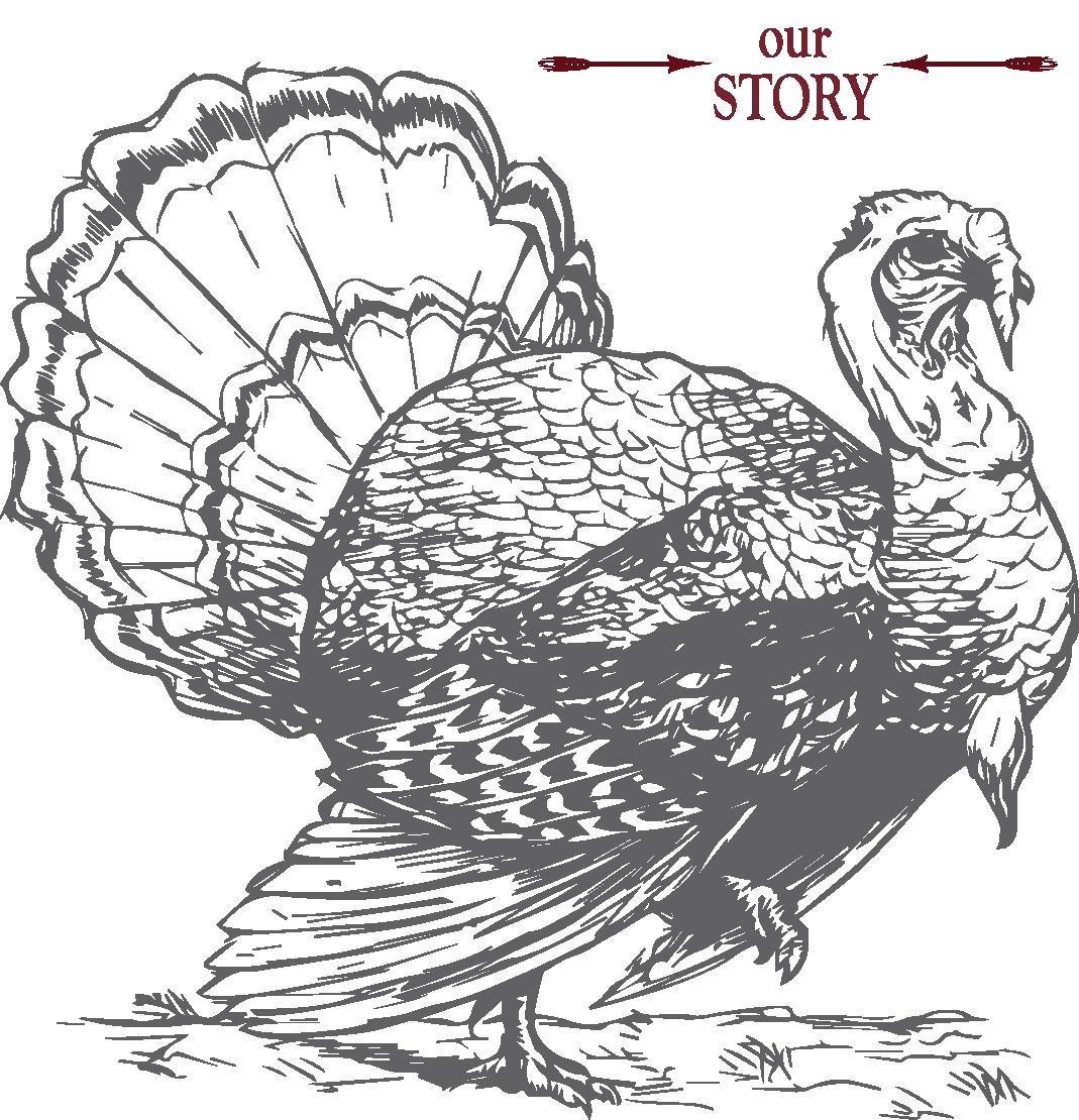 turkeylinedrawing1