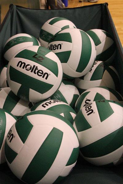 valpo volleyball jv vs michcity 2012-(51)